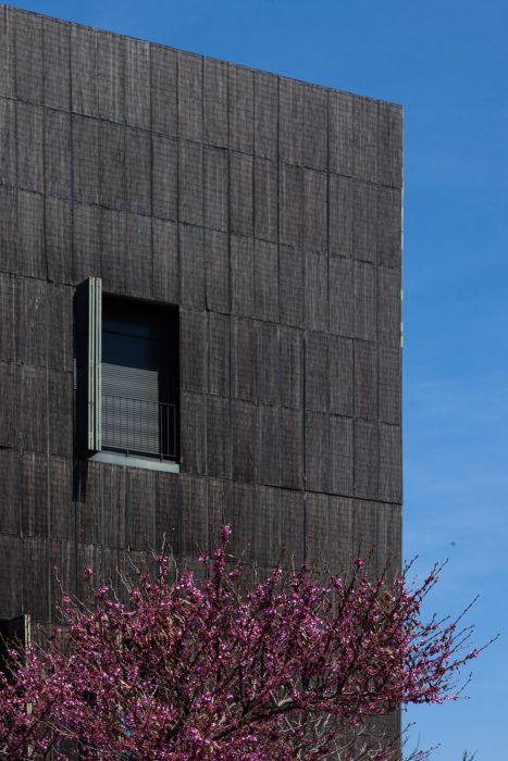 edificio-bambu-04
